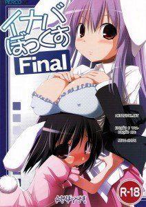 hipercool.net_097_SaHa_Inaba_Box_Final_01